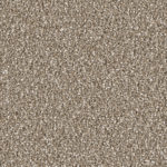 Horizen Flooring presents to you a picture of a 100% PureColor TM Solution Dyed BCF polyester carpet, manufactured by DreamWeaver. Color: Acorn 858.