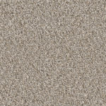 Horizen Flooring presents to you a picture of a 100% PureColor TM Solution Dyed BCF polyester carpet, manufactured by DreamWeaver. Color: Ash 945.