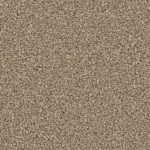 Horizen Flooring presents to you a picture of a 100% PureColor TM Solution Dyed BCF polyester carpet, manufactured by DreamWeaver. Color: Bamboo 565.