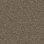 Horizen Flooring presents to you a picture of a 100% PureColor TM Solution Dyed BCF polyester carpet, manufactured by DreamWeaver. Color: Cocoa 550.