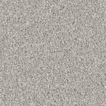 Horizen Flooring presents to you a picture of a 100% PureColor TM Solution Dyed BCF polyester carpet, manufactured by DreamWeaver. Color: Dove 800.