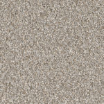 Horizen Flooring presents to you a picture of a 100% PureColor TM Solution Dyed BCF polyester carpet, manufactured by DreamWeaver. Color: Iron Fist 815.
