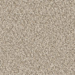 Horizen Flooring presents to you a picture of a 100% PureColor TM Solution Dyed BCF polyester carpet, manufactured by DreamWeaver. Color: Linen 824.