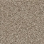Horizen Flooring presents to you a picture of a 100% PureColor TM Solution Dyed BCF polyester carpet, manufactured by DreamWeaver. Color: Mushroom 715.