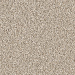 Horizen Flooring presents to you a picture of a 100% PureColor TM Solution Dyed BCF polyester carpet, manufactured by DreamWeaver. Color: Oxford 720.