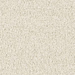 Horizen Flooring presents to you a picture of a 100% PureColor TM Solution Dyed BCF polyester carpet, manufactured by DreamWeaver. Color: Pearlesque 716.