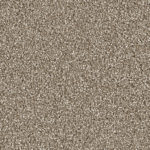 Horizen Flooring presents to you a picture of a 100% PureColor TM Solution Dyed BCF polyester carpet, manufactured by DreamWeaver. Color: Quail 725.