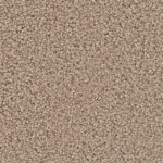 Horizen Flooring presents to you a picture of a 100% PureColor TM Solution Dyed BCF polyester carpet, manufactured by DreamWeaver. Color: Adobe 542