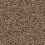 Horizen Flooring presents to you a picture of a 100% PureColor TM Solution Dyed BCF polyester carpet, manufactured by DreamWeaver. Color: Balsam 565