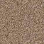 Horizen Flooring presents to you a picture of a 100% PureColor TM Solution Dyed BCF polyester carpet, manufactured by DreamWeaver. Color: Buff 720.