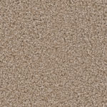 Horizen Flooring presents to you a picture of a 100% PureColor TM Solution Dyed BCF polyester carpet, manufactured by DreamWeaver. Color: Canyon Cliff 571