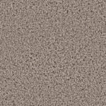 Horizen Flooring presents to you a picture of a 100% PureColor TM Solution Dyed BCF polyester carpet, manufactured by DreamWeaver. Color: Castle 945