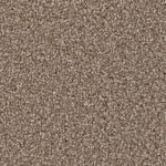 Horizen Flooring presents to you a picture of a 100% PureColor TM Solution Dyed BCF polyester carpet, manufactured by DreamWeaver. Color: Dove 725