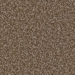 Horizen Flooring presents to you a picture of a 100% PureColor TM Solution Dyed BCF polyester carpet, manufactured by DreamWeaver. Color: Jacobean 852