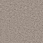 Horizen Flooring presents to you a picture of a 100% PureColor TM Solution Dyed BCF polyester carpet, manufactured by DreamWeaver. Color: Mineral 850