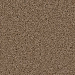 Horizen Flooring presents to you a picture of a 100% PureColor TM Solution Dyed BCF polyester carpet, manufactured by DreamWeaver. Color: Sable 510.