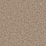 Horizen Flooring presents to you a picture of a 100% PureColor TM Solution Dyed BCF polyester carpet, manufactured by DreamWeaver. Color: Sawgrass 701.