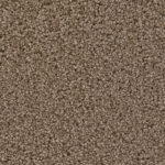 Horizen Flooring presents to you a picture of a 100% PureColor TM Solution Dyed BCF polyester carpet, manufactured by DreamWeaver. Color: Toffee Crunch 849.