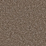 Horizen Flooring presents to you a picture of a 100% PureColor TM Solution Dyed BCF polyester carpet, manufactured by DreamWeaver. Color: Tumbleweed 829