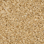 Horizen Flooring presents to you a picture of a 100% PureColor TM Solution Dyed BCF polyester carpet, manufactured by DreamWeaver. Color: Barley Beige 703.
