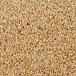 Horizen Flooring presents to you a picture of a 100% PureColor TM Solution Dyed BCF polyester carpet, manufactured by DreamWeaver. Color: Buff 3551.