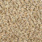 Horizen Flooring presents to you a picture of a 100% PureColor TM Solution Dyed BCF polyester carpet, manufactured by DreamWeaver. Color: Clamshell 779.