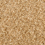 Horizen Flooring presents to you a picture of a 100% PureColor TM Solution Dyed BCF polyester carpet, manufactured by DreamWeaver. Color: Desert Storm 665.