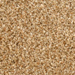 Horizen Flooring presents to you a picture of a 100% PureColor TM Solution Dyed BCF polyester carpet, manufactured by DreamWeaver. Color: Rye 672.